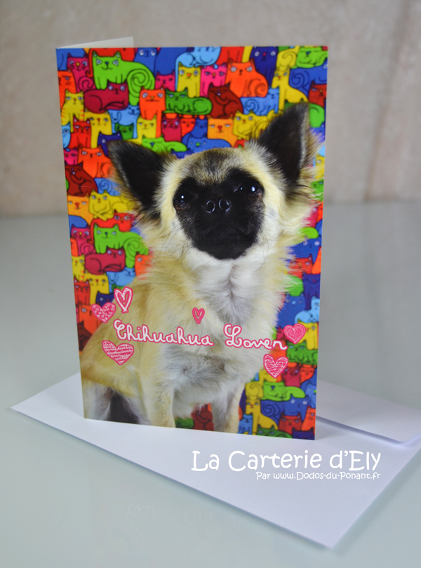 Carte chihuahua lover