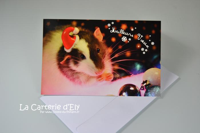 Carte de voeux Raton de Noël