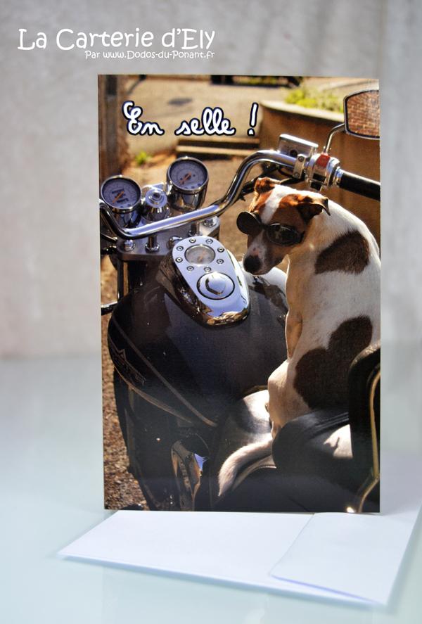 """Carte """"En selle"""" Jack russell sur sa moto"""
