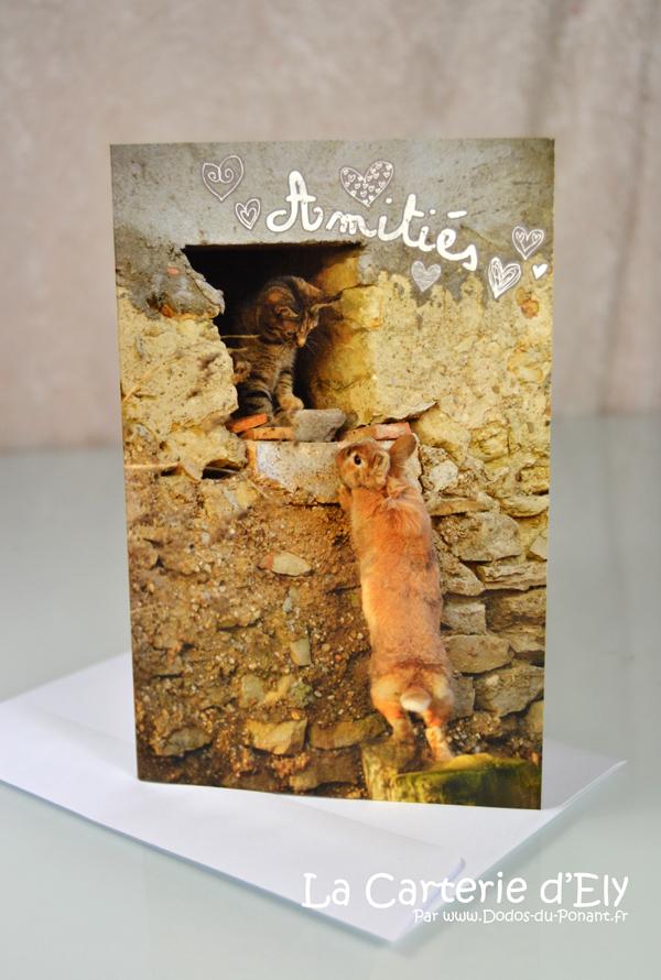 Carte d'amitié petit chat et lapinou